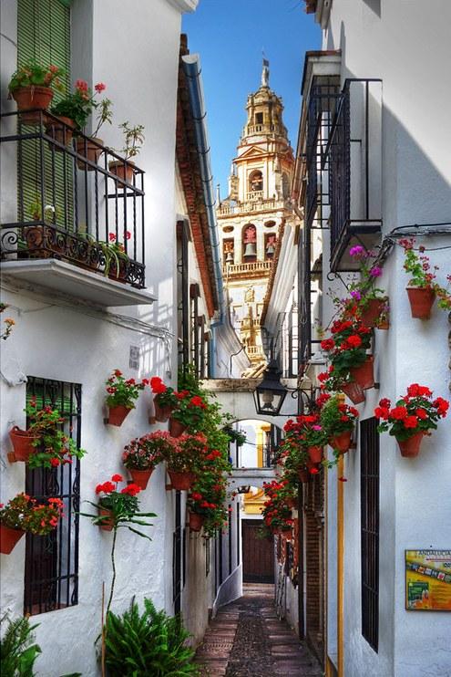 Juderìa, The Jewish Quarter, Córdoba, Andalusia, Spain