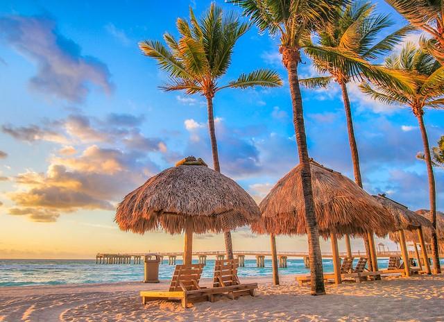 Cosa Vedere a Miami: i 12 Posti Più Belli da Non Perdere a Miami