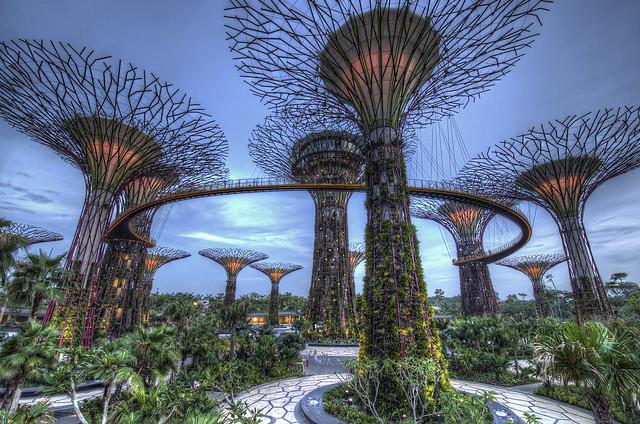 Cosa Vedere a Singapore: i 16 Posti Più Belli da Non Perdere a Singapore