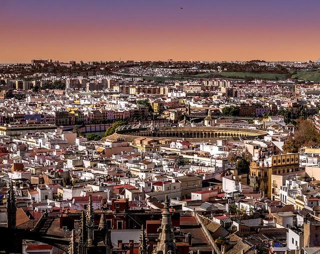 Plaza de Toros de la Real Maestranza from La Giralda, Sevilla, Andalusia, Spain,