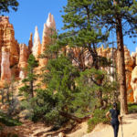 Bryce Canyon National Park Amphitheather Traverse Near Queens Garden