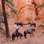 Horse Ride on Peek A Boo Loop in Bryce Canyon National Park in Utah