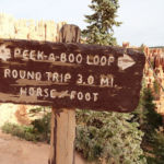 Peekaboo Loop in Bryce Canyon National Park in Utah USA