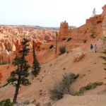 The Trail between Bryce Point and the Peek A Boo Junction in Bryce Canyon National Park in Utah