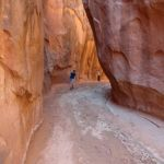 Entering Dry Fork Narrows in the Dry Fork of Coyote Gulch in Grand Staircase Escalante National Monument in Utah USA