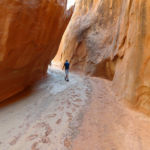 Exiting the Dry Fork Narrows in Grand Staircase Escalante National Monument in Utah USA