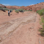 Hiking the Dry Fork of Coyote Gulch near the lower entrance of Peek-A-Boo in Grand Staircase Escalante National Monument in Utah