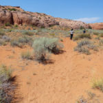 Walking the Dry Fork of Coyote Gulch between the lower entrance of Spooky and the lower entrance of Peek-A-Boo in Grand Staircase Escalante NM in Utah