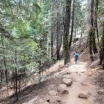 Panorama Trail near Illilouette Creek Yosemite NP California USA