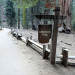 Start of the Congress Trail Sequoia NP California USA